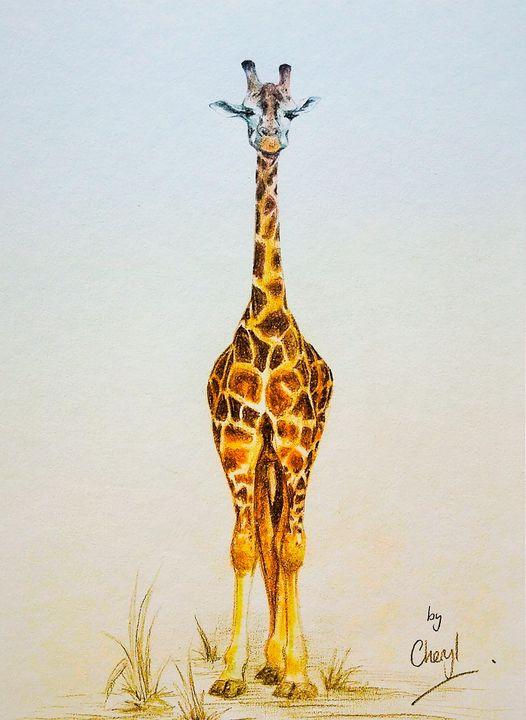 Giraffe - Cheryl Rourke