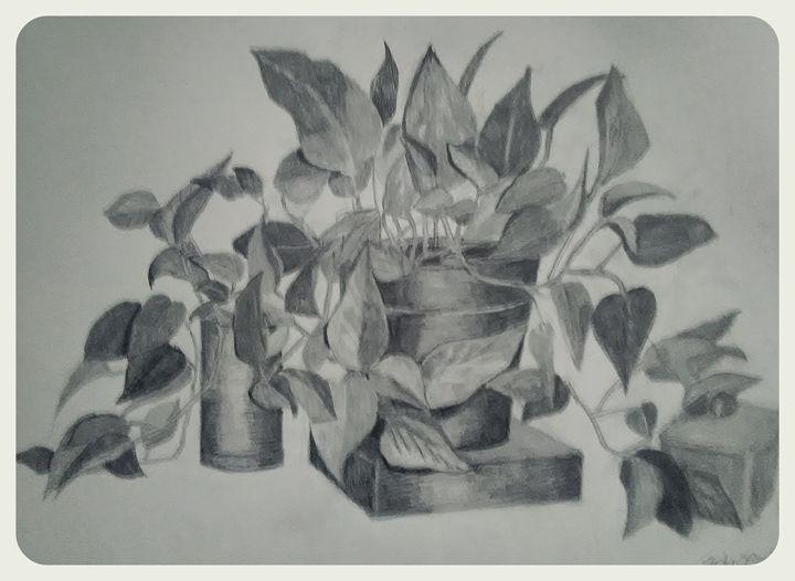 Seymor - Judy Bonin