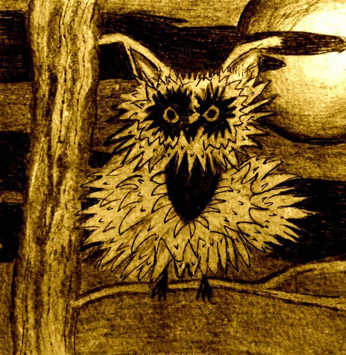 Night Owl - Judy Bonin
