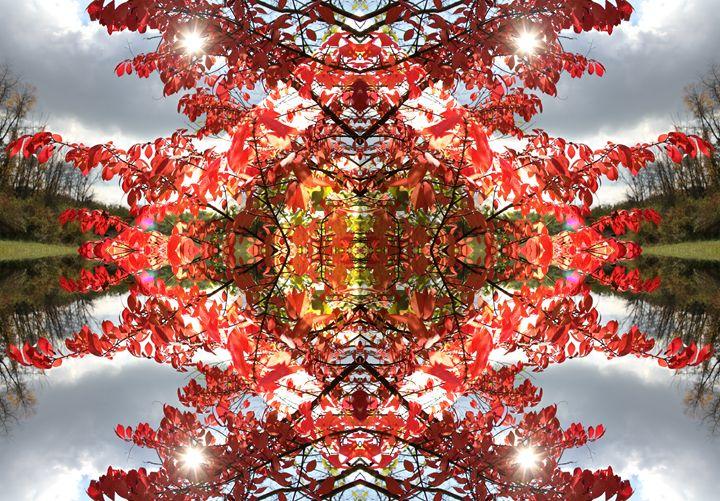 Utopiate Sky - Bradford Watkins Creations
