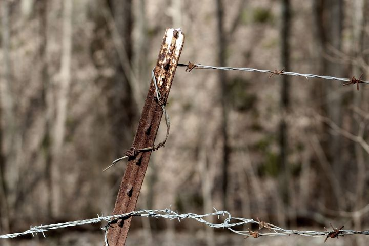 Barbed wire - Courtney