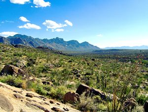 Catalina Mountain High Noon