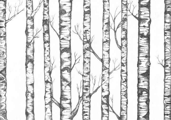 Silver Birch in Winter - Anthony David Hobbs