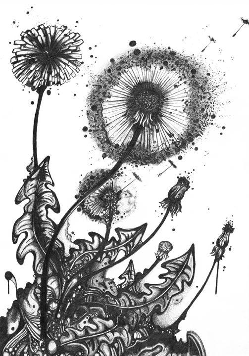 Dandelions - Anthony David Hobbs