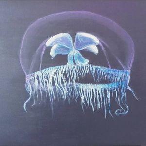 Jelly fisch