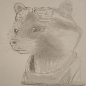 Rocket raccoon(original)