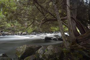 Rapids Along Ontonagon River