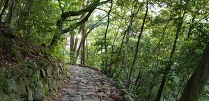 Hakone path