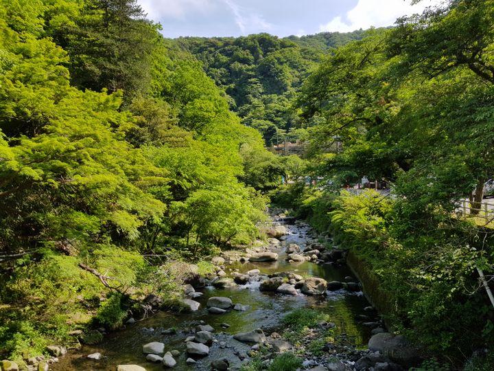 Hakone stream - Tiago Ferreira