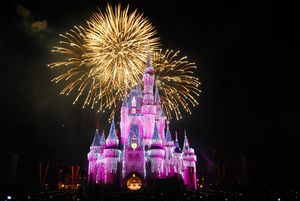 Pink Cinderella Castle with Firework