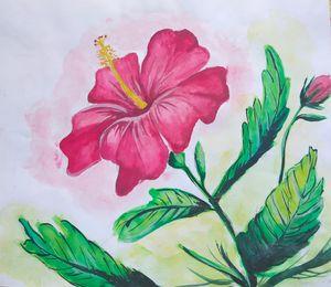 Hibiscus in Peace🌺