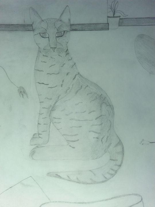 Cat - Meow Art