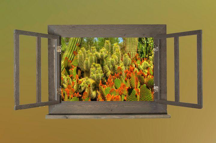 Desert Botanicals - Behind the Shutter Photography