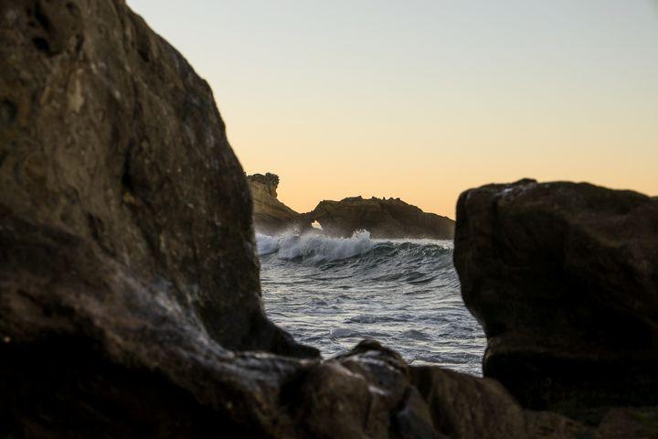 Laguna Beach - Lisa Willey Photography