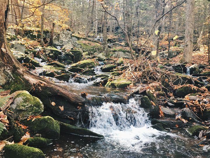 Cascades - Wanderlust