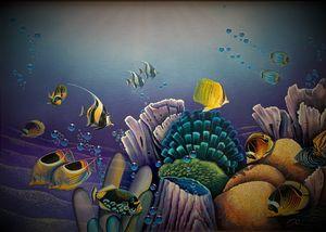 Kish Corals