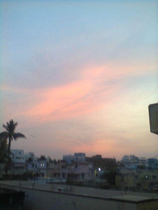 evening sky - Rose