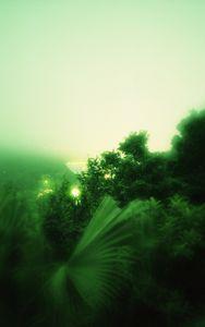Lights beyond