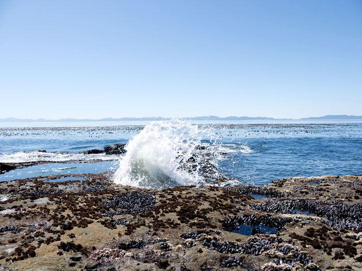 Splash - Photology Photography