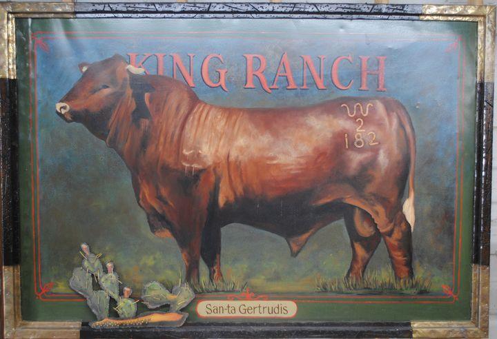 King Ranch - Santa Gertrudis - Chago