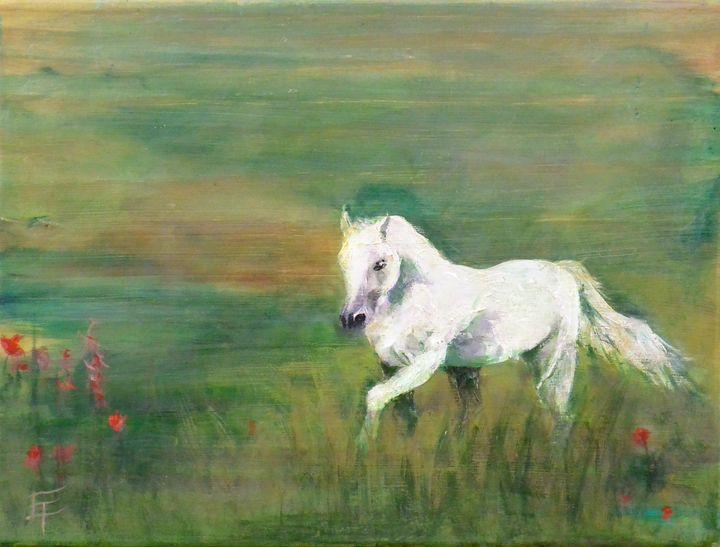 White Horse - Erin Trombley Art *