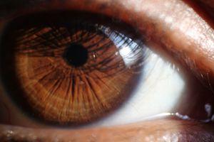 Her eyes !!