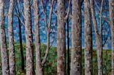 collage trees cm 70x100