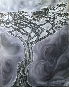 """Lone Cypress"""