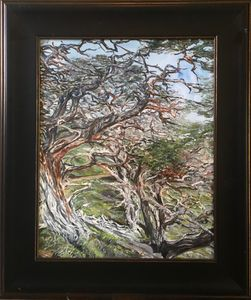 """Point Lobos Trail"""