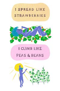 I Spread Like Strawberries