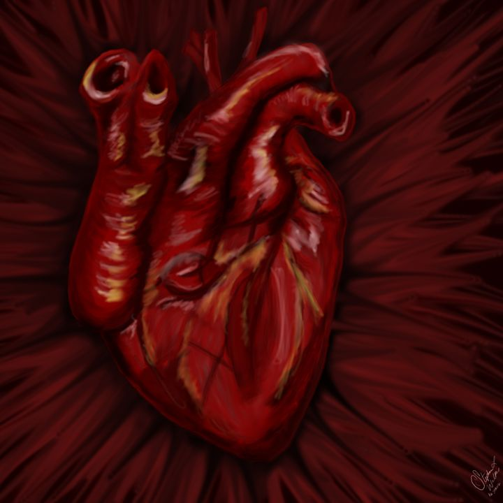 Heart. The human condition. - Lupi's Wonders