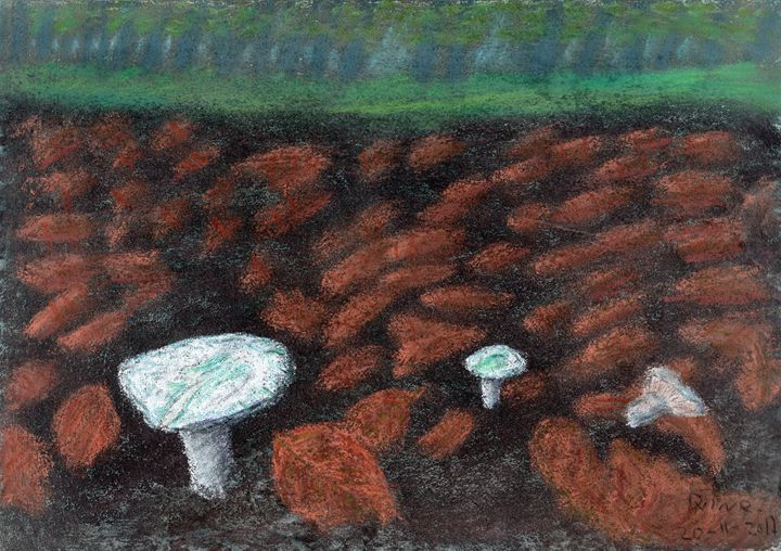 Forest Floor Mushrooms - pastel - Darkvine Art