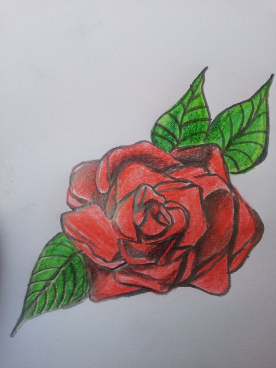 Colour of Love - Bron