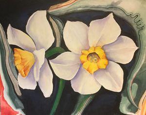 Narcissus - Farideh