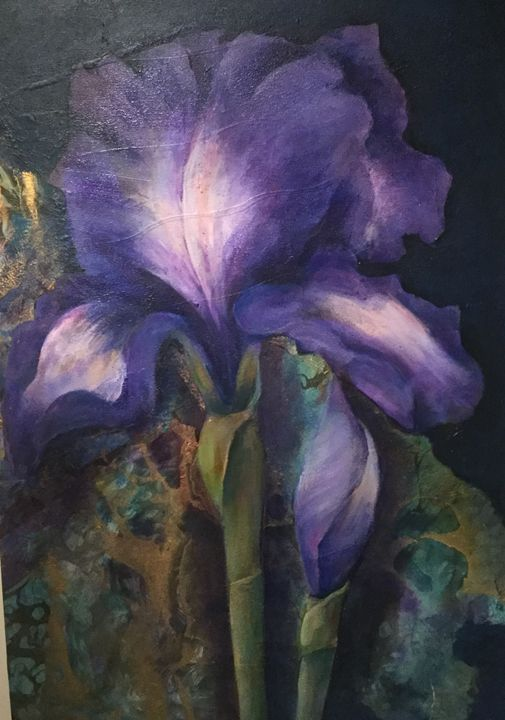 Iris - Farideh