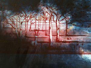 Woodland Illustration