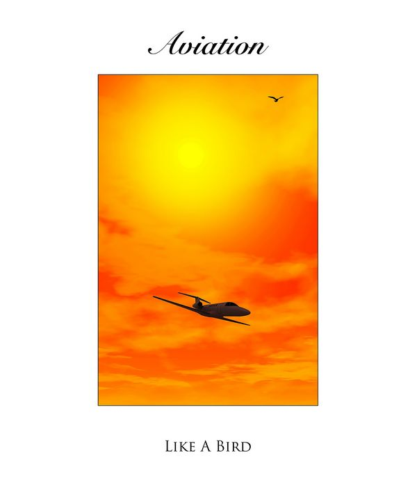 Aviation Like a Bird - Karl Knox Images