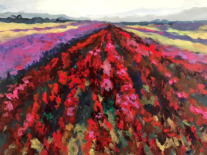 Lompoc Flower Fields - Ramya Oil Paintings