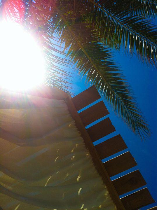 Sun In My Flesh - Nikolas