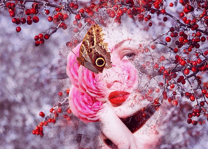 Oeil papillon - R.artwork