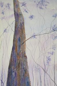Lone Timber