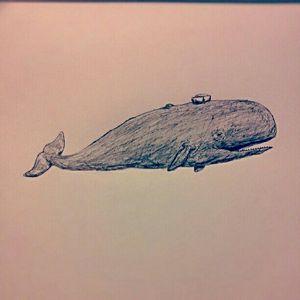 Whale Sailor