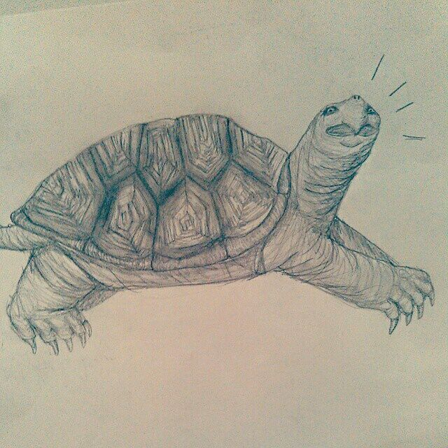 Snapping Turtle - As is Printshop