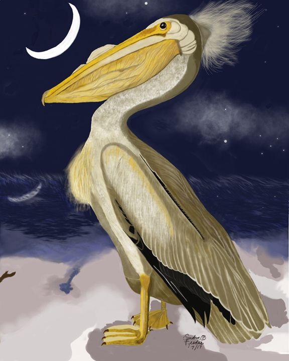 American Pelican - DigitalNana