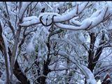12x20 snow time
