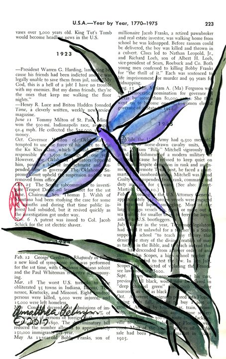Blue Dragonfly - Aelwyn Studios