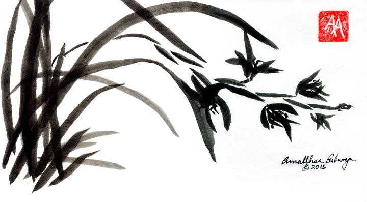 Asian Orchids - Aelwyn Studios
