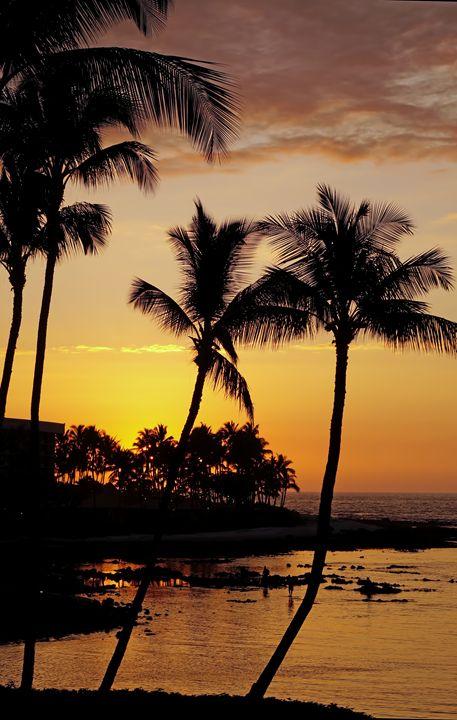 Paradise Awaits - Photography by Pamela