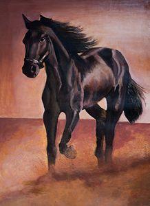 The Free Stallion