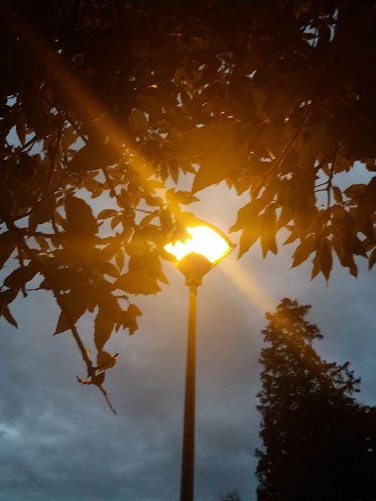 The lamp - Esterina